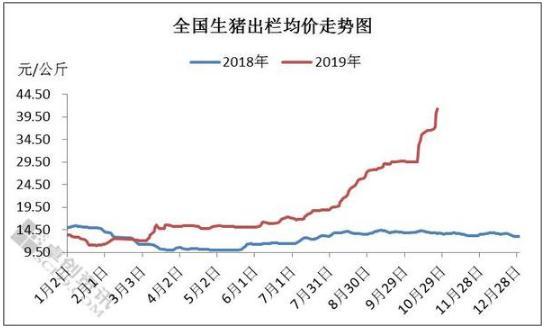 10月份猪肉价格上涨情况